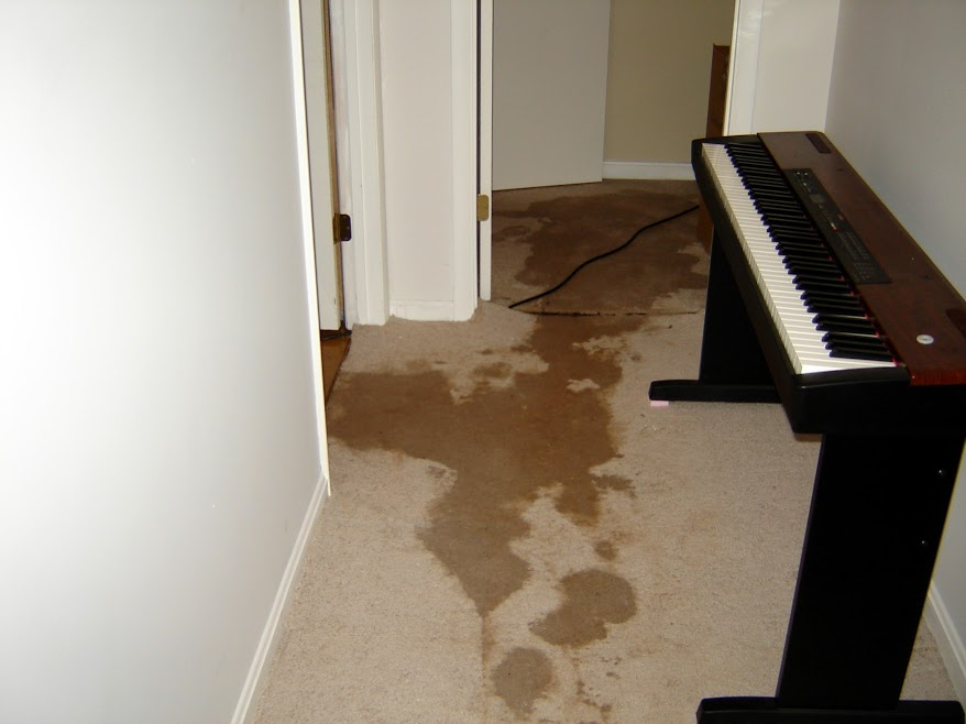 What Water Damage Can Do To Your Home