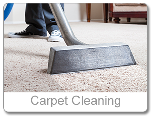 ServiceCarpetCleaning