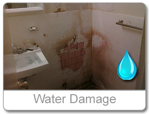 water damage cleanup md
